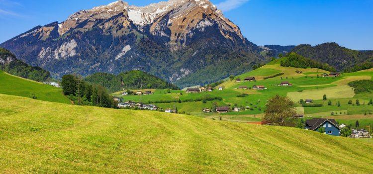 Vortrag – Selektive Zuwanderung und alpine Gentrifizierung – 01. Feb. 2018